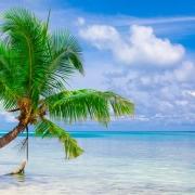 Zanzibar en Tanzania in Afrika door Younique Incentive Travel